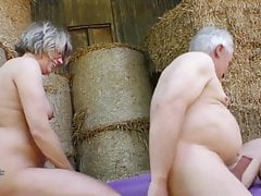 Amateur romping elderly farmers next to cows